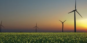 EBCE windmills photo