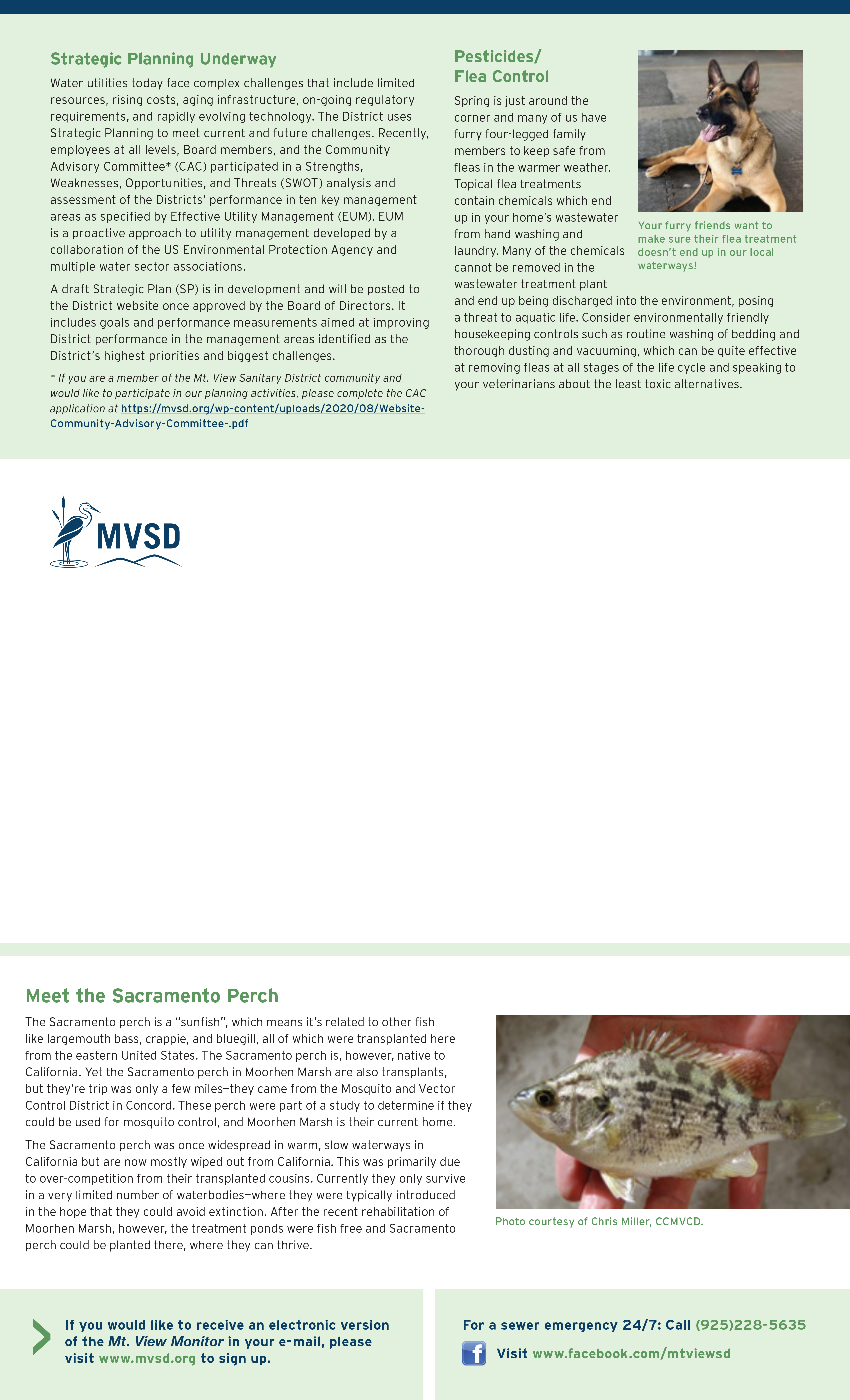 MVSD E-newsletter Page 2